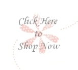 blog insert - shop now