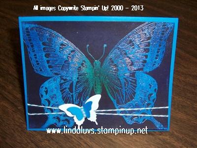 Swallowtail 4-29